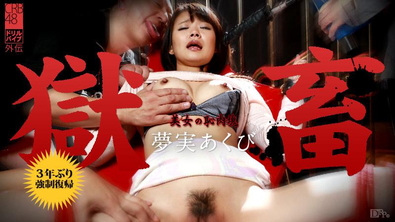 獄畜17 〜美女の恥肉塊〜