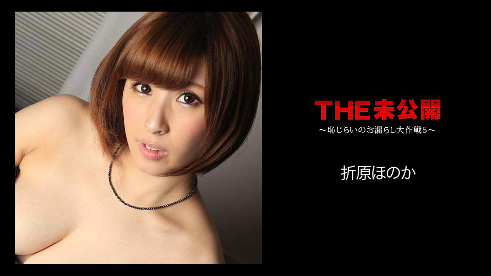THE未公開〜恥じらいのお漏らし大作戦5〜