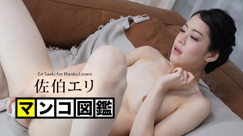 マンコ図鑑 佐伯エリ