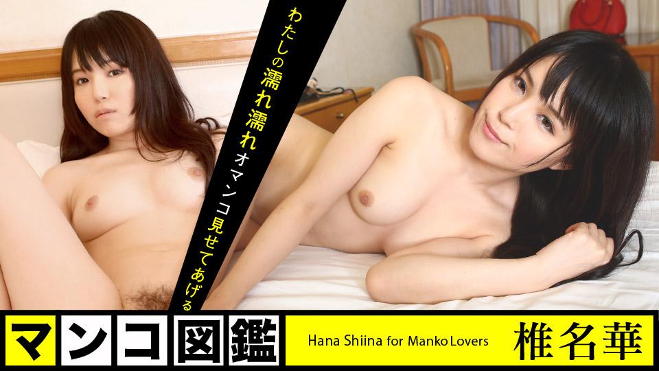 Caribbeancom 112818-801 porn jav Pussy Encyclopedia: Hana Shina